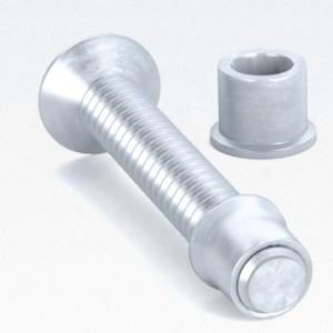 Lockbolt (perno+collar)